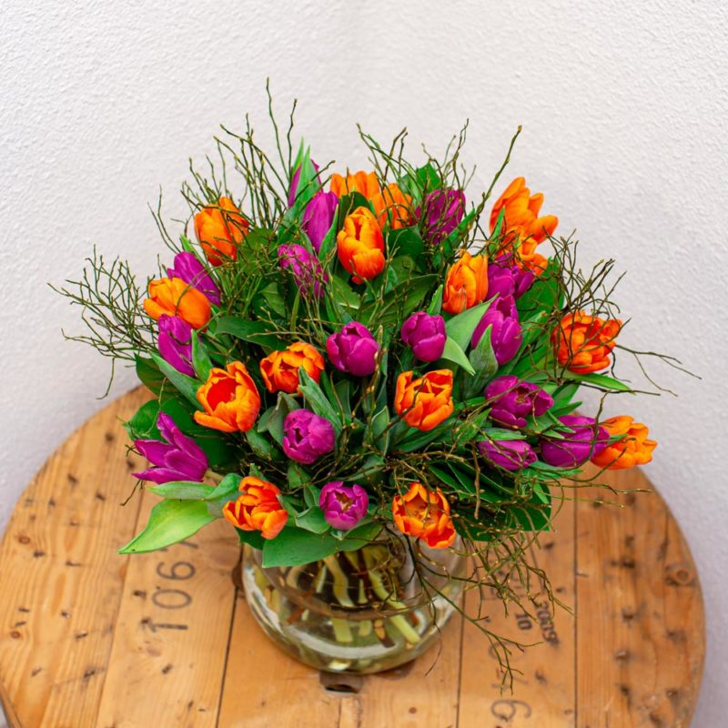 Oranje En Paarse Tulpen