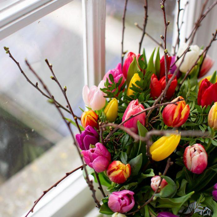 Gekleurde Tulpen Close Up Kwieke Bos