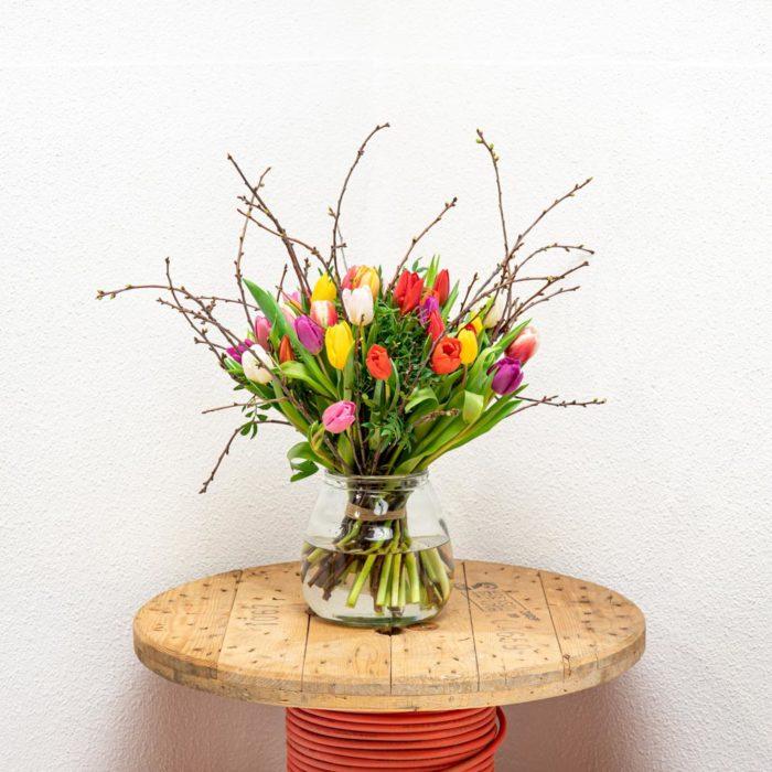 Gekleurde Tulpen Vooraanzicht Kwieke Bos