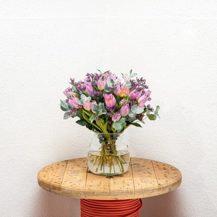 Tulpen Paars Koningspaar