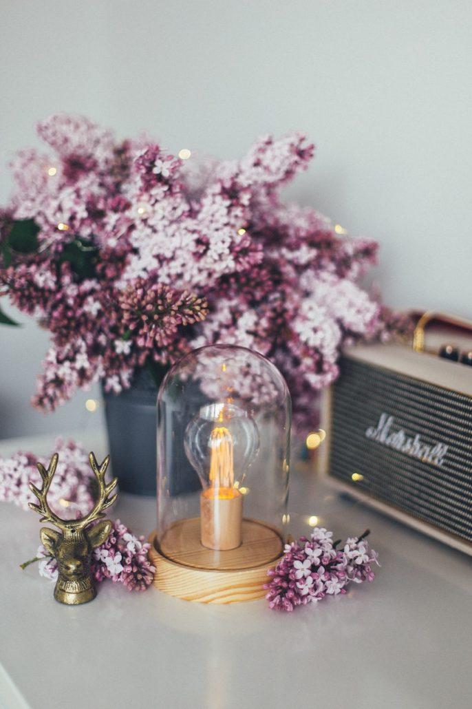 Bloemen Van De Lente Seringen