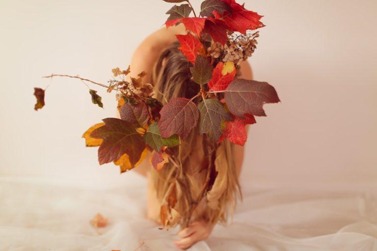 Herfstbloemen brengen het gevoel van de zomer in huis